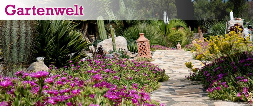 Gartenwelt Terracottalampe